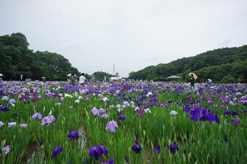東村山北山公園