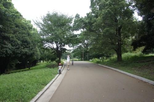 光ヶ丘公園